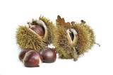 Sweet chestnut in their prickly shell isolated on white background - 212169940