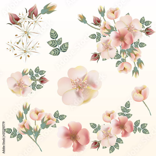 Big set of vector pink pastel wild roses for save the date cards, invitations, patterns
