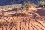Sand dunes of Monument Valley - 212222195