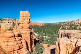 Red Canyon rocks, Utah, USA - 212222933