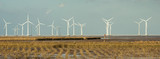 Panorama of Offshore Wind Turbines near Bac Lieu сity in South Vietnam at low tide.. Nha Mat village. Evening view