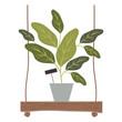 houseplant in swing decorative icon vector illustration design