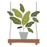 houseplant in swing decorative icon vector illustration design - 212291909