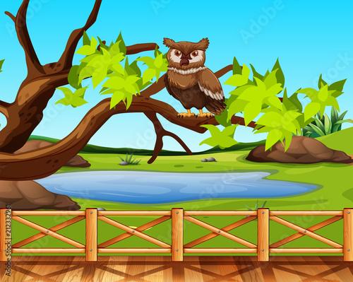 Fotobehang Uilen cartoon An owl sitting in a tree scene