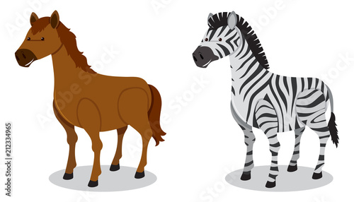 Sticker Horse and Zebra on White Background
