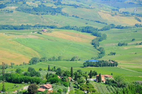 Aluminium Olijf Beautiful landscape of hills, cypress trees and houses in Tuscany, Italy