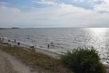 plage de L'Houmeau La Rochelle