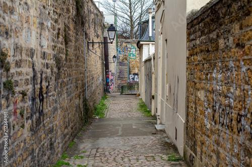 Fotobehang Smalle straatjes Rue de Lyon