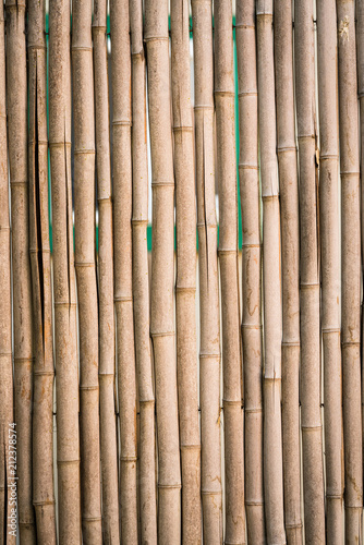 Fototapeta Natural Bamboo Fence
