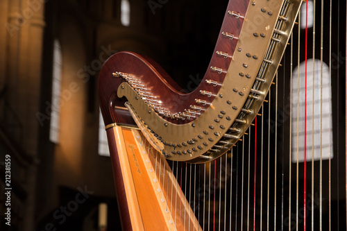 Harfe - 212381559