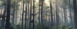 Trees in the fog. The smoke in the forest in the morning. A misty morning among the trees. 3D rendering © ustas
