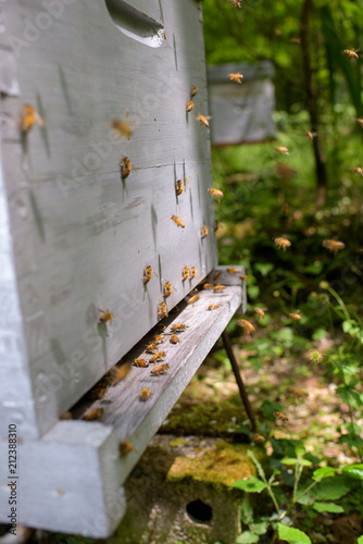 Aluminium Bee bees exiting the hive