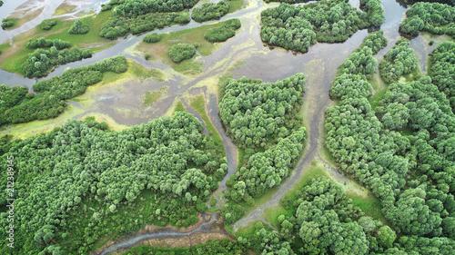 Fotobehang Olijf Aerial landscape- natural river