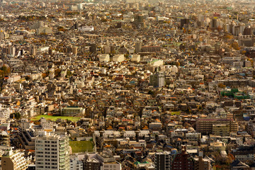 Crowded city residence downtown aerial view, Tokyo cityscape background, Japan