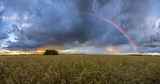 rainbow over the field after a morning downpour - 212414186