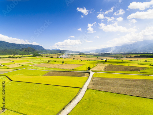 aerial view of rice field .Taiwan. - 212416592