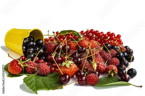 Berries garden mix - 212421173