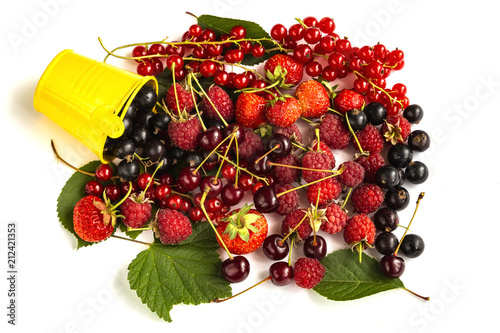 Aluminium Kersen Berries garden mix