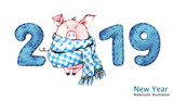 2019 Happy New Year banner. Cute pig in winter scarf with numbers. Watercolor illustration. Symbol of winter holidays. Zodiac sign. Perfect for calendar and celebration card. - 212447348