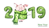 2019 Happy New Year banner. Cute pig in winter scarf with numbers. Watercolor illustration. Symbol of winter holidays. Zodiac sign. Perfect for calendar and celebration card. - 212447361