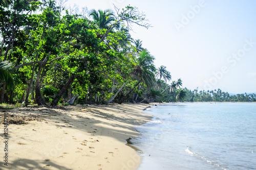 Fotobehang Tropical strand Puerto Rico