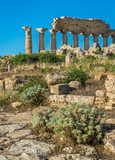 Ruins in Selinunte, archaeological site and ancient greek town in Sicily, Italy. - 212487913
