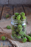Young green pine cones for useful and tasty jam. Raw food - 212504762