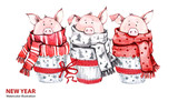 2019 Happy New Year illustration. Christmas border. 3 Cute pigs in winter scarves. Greeting watercolor cakes. Symbol of winter holidays. Zodiac sign. Perfect for calendar and card - 212523922
