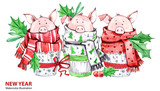 2019 Happy New Year illustration. Christmas border. 3 Cute pigs in winter scarves. Greeting watercolor cakes. Symbol of winter holidays. Zodiac sign. Perfect for calendar and card - 212523939