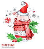 2019 Happy New Year illustration. Christmas. Cute pig in winter scarf with Santa hat. Greeting watercolor cake. Symbol of winter holidays. Zodiac sign. Perfect for calendar and card. - 212523944