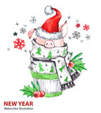 2019 Happy New Year illustration. Christmas. Cute pig in winter scarf with Santa hat. Greeting watercolor cake. Symbol of winter holidays. Zodiac sign. Perfect for calendar and card. - 212523947