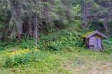 Kleine Holzhütte im Wald - 212525100