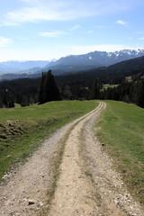 Wanderweg in den bayerischen Bergen