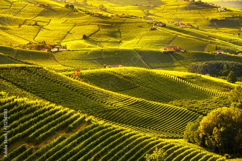 Fotobehang Meloen Langhe vineyards sunset panorama, Barolo, Piedmont, Italy Europe.