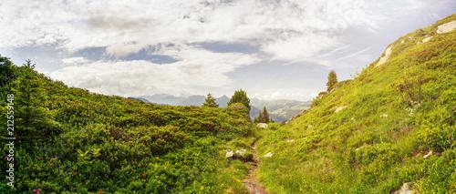 Alpen Panorama mit Wanderweg