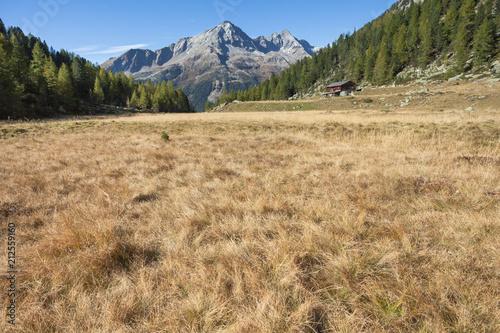 Plexiglas Herfst walking at fall in a mountain valley