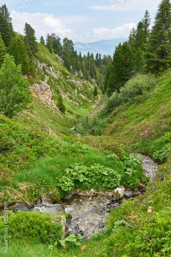 Wasser im Bach in den französischen Alpen - 212559191