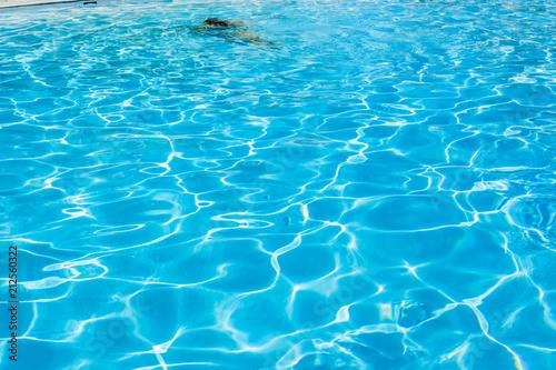 Foto Murales  piscine sous les rayons du soleil
