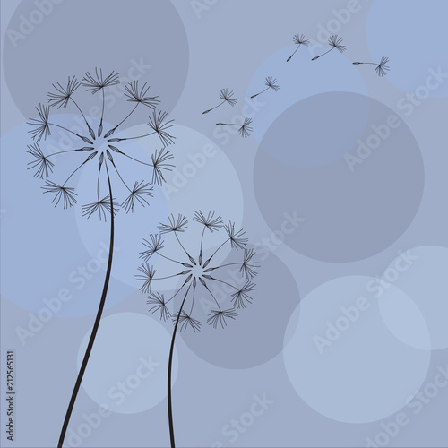 dandelion-with-flying-seeds