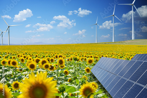 Renewable energy resources in natural environment with sunflower field, photovoltaic panels and windmills
