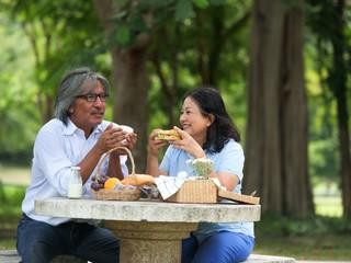 Happy Senior couple picnicking in the garden home.