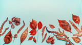 Various  autumn colorful leaves on blue background, top view, border - 212578170