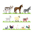 Cute farm animals set - 212579956