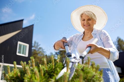 Leinwanddruck Bild gardening, trimming and people concept - happy senior woman or gardener with hedge trimmer at summer garden