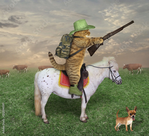 Fotobehang Paarden The cat cowboy with a rifle rides a horse on the ranch. His dog is next to him.