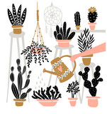 Set of various  indoor potted plants in boho interior . Great for gardening magazines , flower store or home poster. Vector illustration. - 212610321