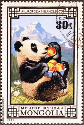 Plexiglas Panda Giant panda on mongolian postage stamp