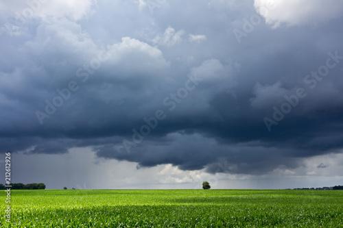 Aluminium Lente Stormy sky and field