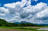 浅間山を望む - 212615959