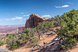 Canyonlands National Park landscape, Utah - 212627138